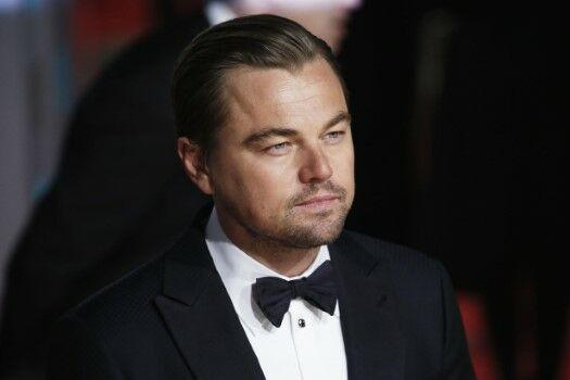 Dis6 Leonardo DiCaprio Custom 44436