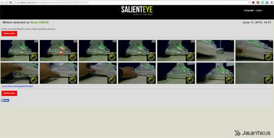 Salienteye Report
