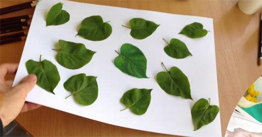 Fake Leafe