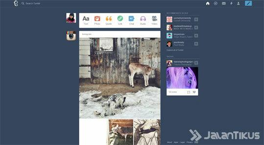 Tumblr Melissa