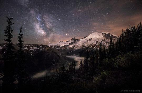 moonlit darklings