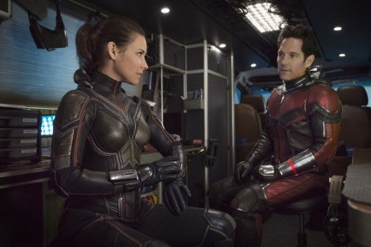 Antman And The Wasp 6d1fc