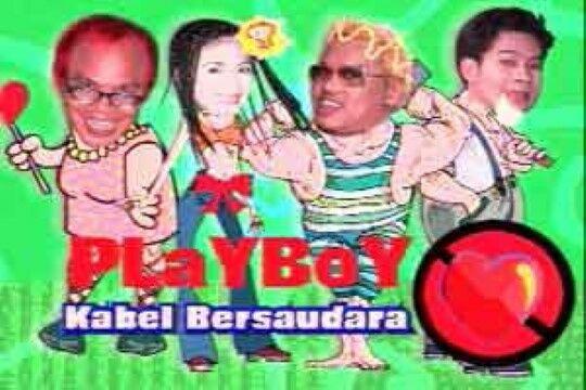 Playboy Kabel F3344
