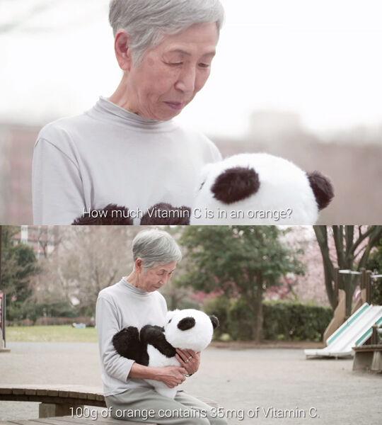 Google Panda Example