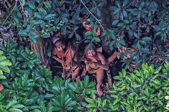 Suku Mante Kecil Ca279