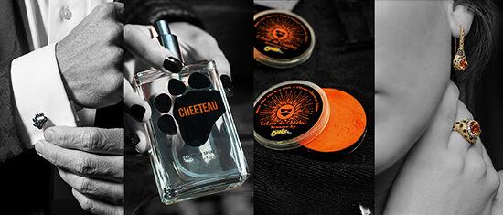Cheetos Pict 2