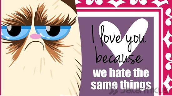 18 Kata Kata Lucu Yang Bisa Digunakan Untuk Menolak Hari Valentine 17