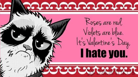 18 Kata Kata Lucu Yang Bisa Digunakan Untuk Menolak Hari Valentine 18