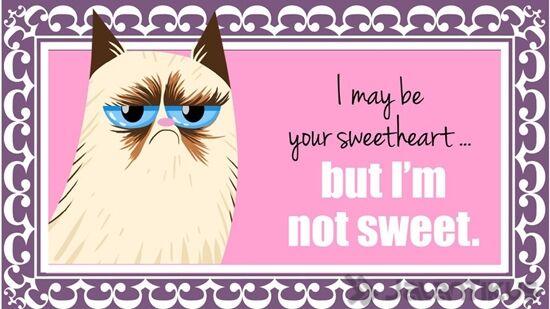 18 Kata Kata Lucu Yang Bisa Digunakan Untuk Menolak Hari Valentine 9