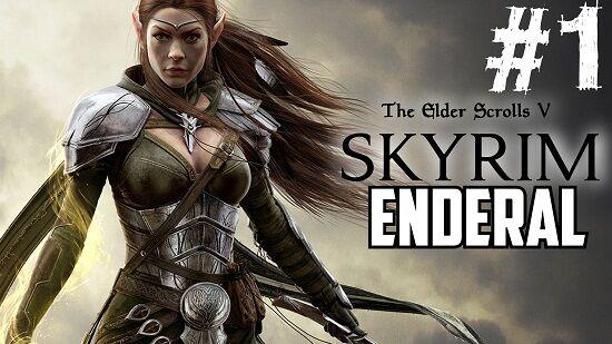 The Elder Scrolls V Skyrim Enderal