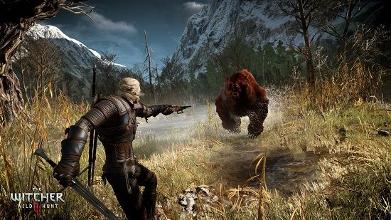 The Witcher Wild Hunt Ghost Mode