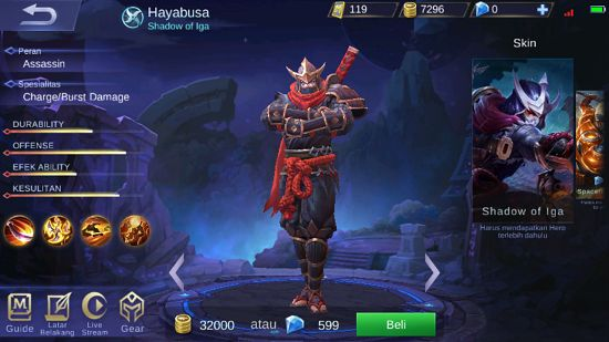 Hayabusa D13e7