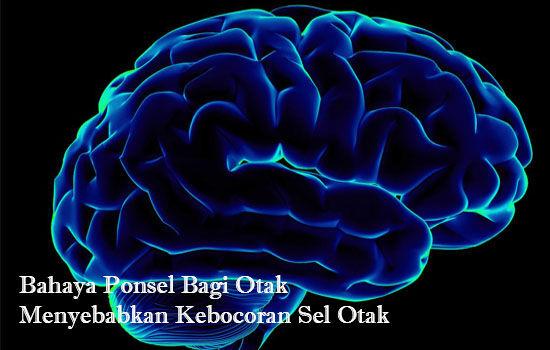 Bahaya Ponsel Bagi Otak Menyebabkan Kebocoran Sel Otak