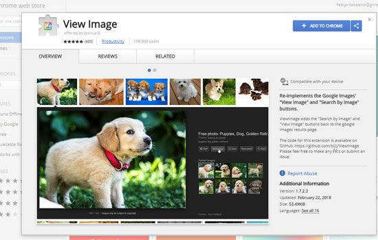 Cara Mengembalikan Tombol View Image Ekstensi