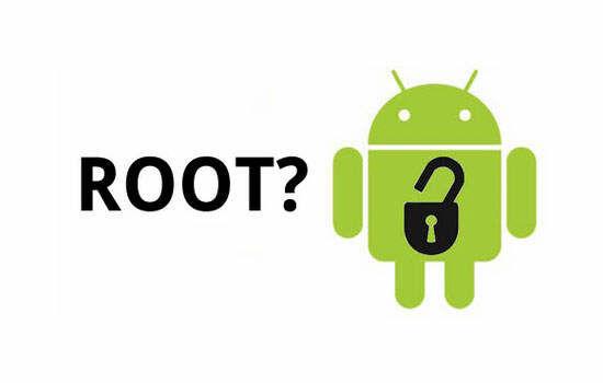 apa itu root (1)