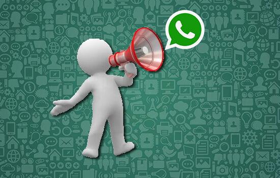 Cara Broadcast Whatsapp Android Ios 093e1