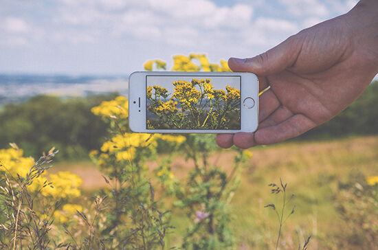 Tips Fotografi Smartphone Penuhi Viewfinder