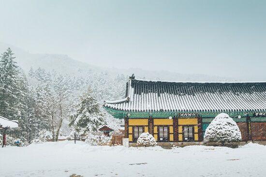 Destinasi Wisata 2018 Pyeongchang