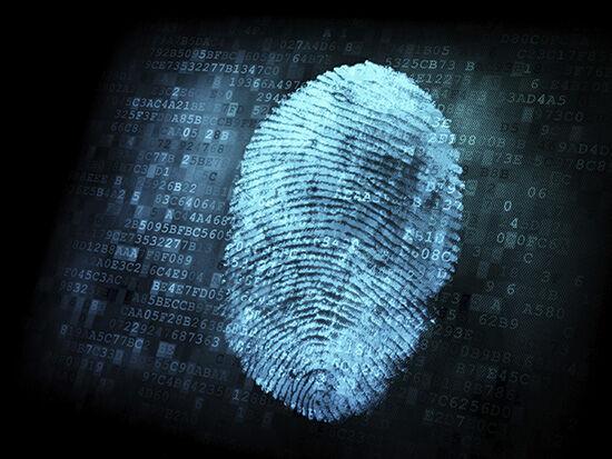 Fingerprint Light Blue