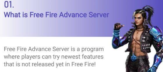 Download Free Fire Advanced Server Apk 2020 Jalantikus