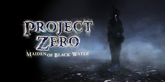 Project Zero 26009
