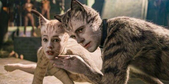 Cats 2019 71c4a