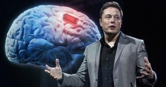 Chip Elon Musk 3 Custom Fba7a