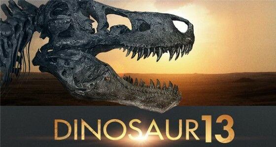 Dinosaur 13 2014 Bd4a2