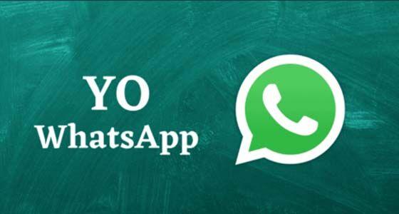 YO WhatsApp 4631a