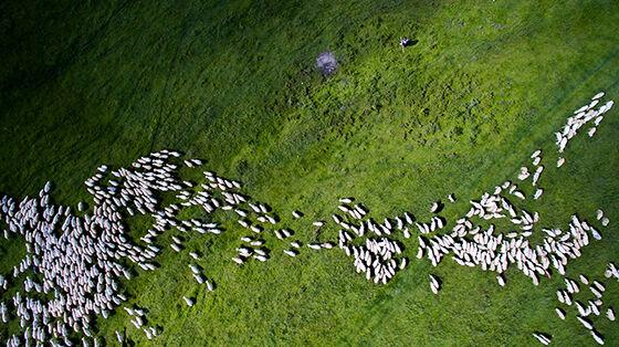 Foto Drone Paling Memukau 10