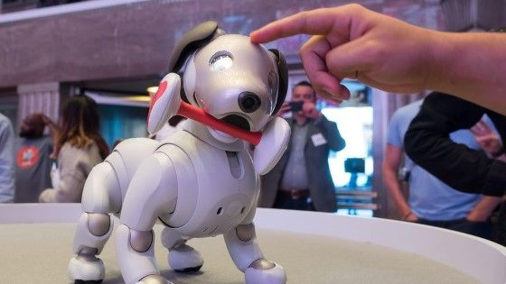 Fakta Tahun 2025 50 Pekerjaan Manusia Diambil Robot 1 639fb