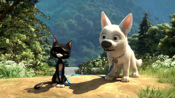 Film Binatang Terbaik 10 2b219