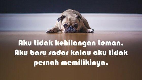 Caption Untuk Sahabat Munafik 7c9f5