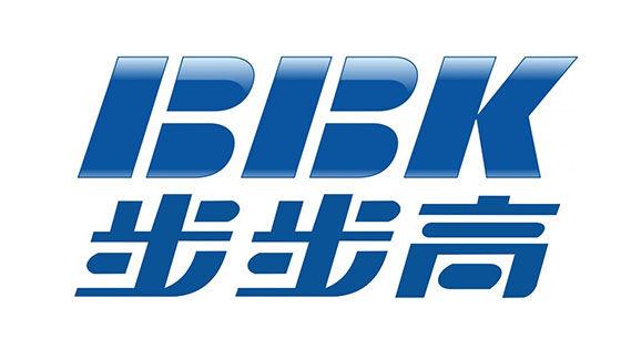 Bbk Logo 4063a