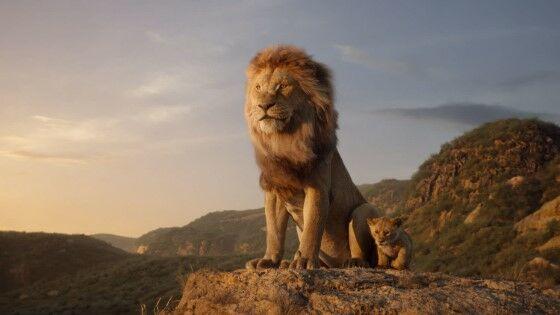 Disnye The Lion King 48553