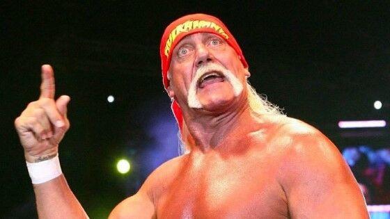 Rasis Hulk Hogan Custom 20901
