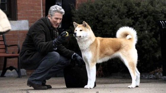 Hachiko A Dogs Story E4d4f