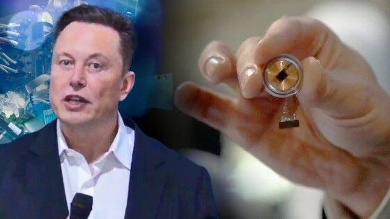 Chip Elon Musk 1 Custom 2b319