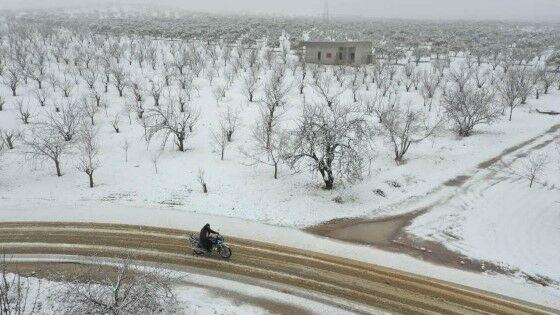 Salju Turun Di Arab Suriah 2360b