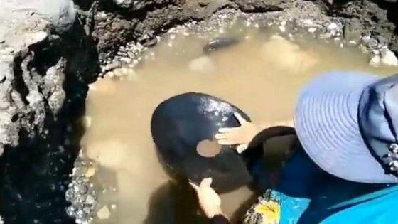 Penemuan Butiran Emas Di Maluku 06d95