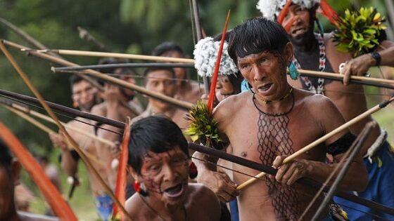 Suku Yanomami 96ba1
