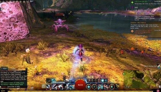 Guild War 2 1 D3e65