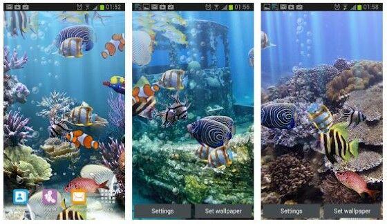Wp Ikan 7 Custom 6dd40
