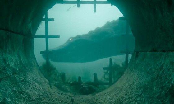 Review Nonton Film Crawl 2 1e6b3