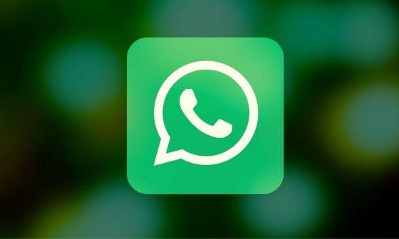 WhatsApp Custom 5101d