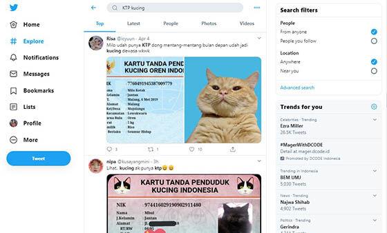 Aplikasi Ktp Kucing 8d755