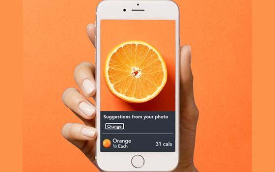 Aplikasi Hitung Kalori Makan Lose It 92ccb