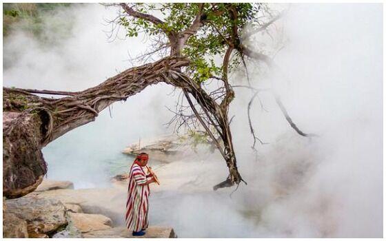 Temuan Aneh Dan Menakjubkan Di Hutan Belantara Sungai Mendidih 7241d