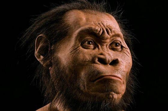 Homo Erectus 04bde