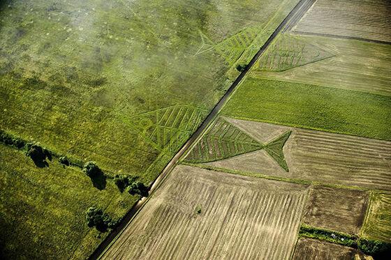 Foto Drone Terbaik di Seluruh Dunia 05